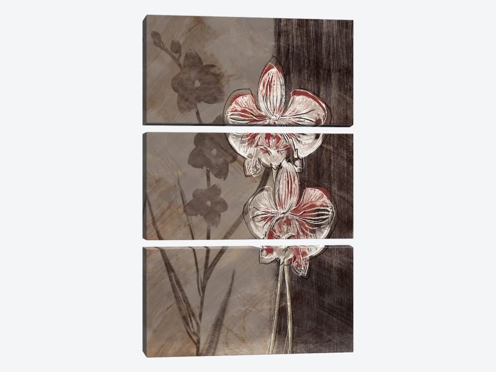 Orchid Sketch I 3-piece Canvas Art Print