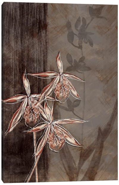Orchid Sketch II Canvas Print #TAN141