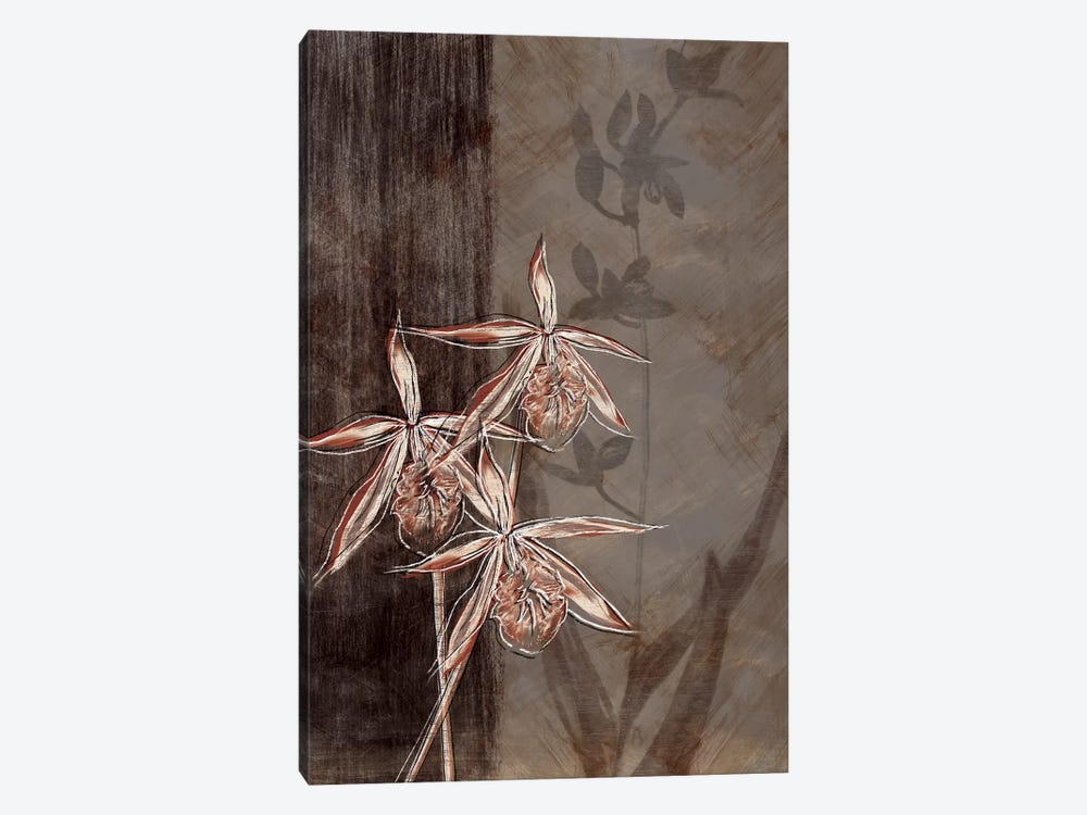 Orchid Sketch II by Tandi Venter 1-piece Canvas Art