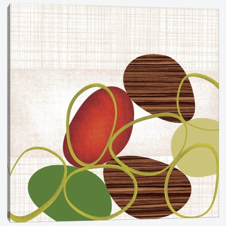 Pebbles 'N' Loops I Canvas Print #TAN145} by Tandi Venter Canvas Art Print