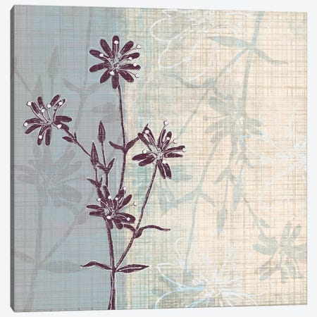 Periwinkle Fields I Canvas Print #TAN149} by Tandi Venter Canvas Art