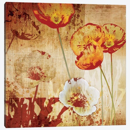 Poppy Heat I Canvas Print #TAN155} by Tandi Venter Canvas Art