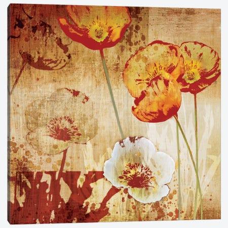 Poppy Heat I Canvas Print #TAN155} by Tandi Venter Canvas Art