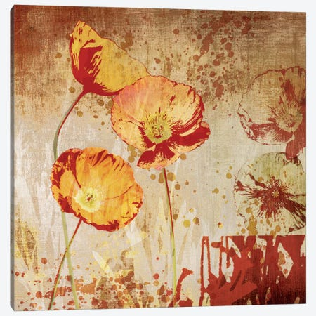 Poppy Heat II Canvas Print #TAN156} by Tandi Venter Canvas Art