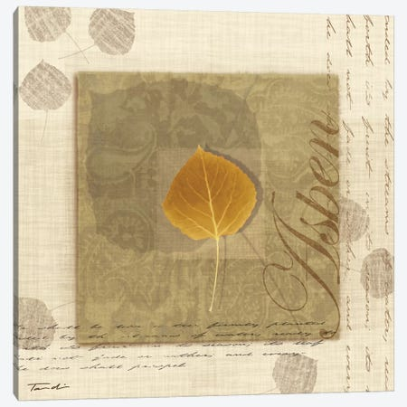 Aspen Canvas Print #TAN15} by Tandi Venter Canvas Artwork