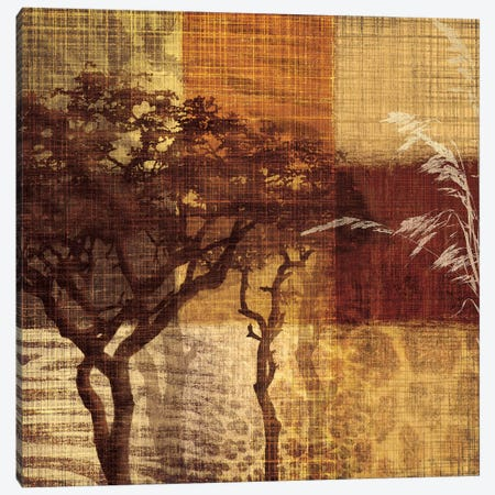 Safari III Canvas Print #TAN165} by Tandi Venter Canvas Print