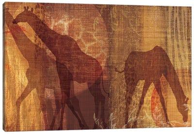 Safari Silhouette III Canvas Art Print