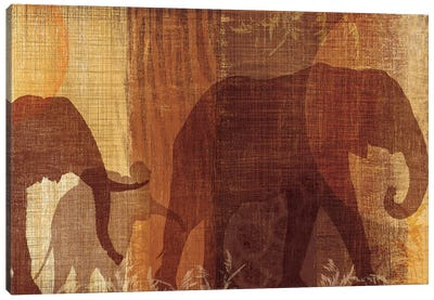Safari Silhouette IV Canvas Art Print