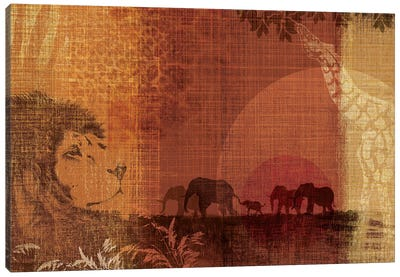Safari Sunset II Canvas Print #TAN169