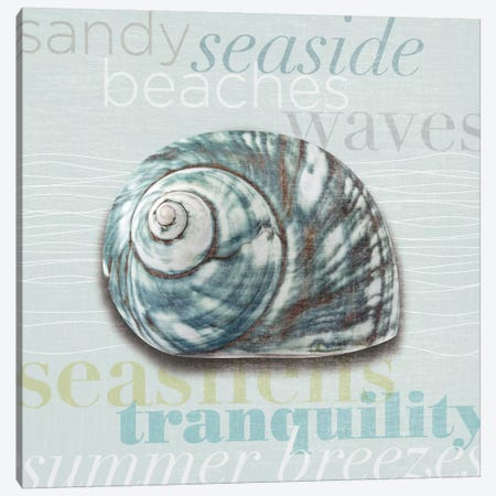 Beach Collection I Canvas Print #TAN17} by Tandi Venter Canvas Artwork