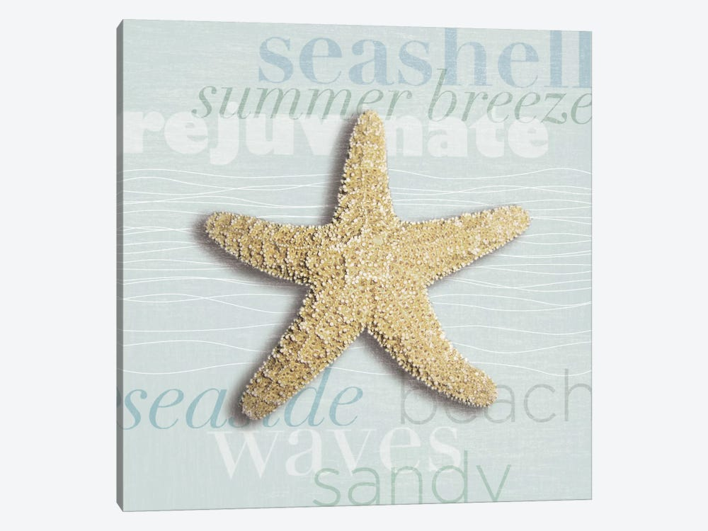 Beach Collection II by Tandi Venter 1-piece Canvas Art
