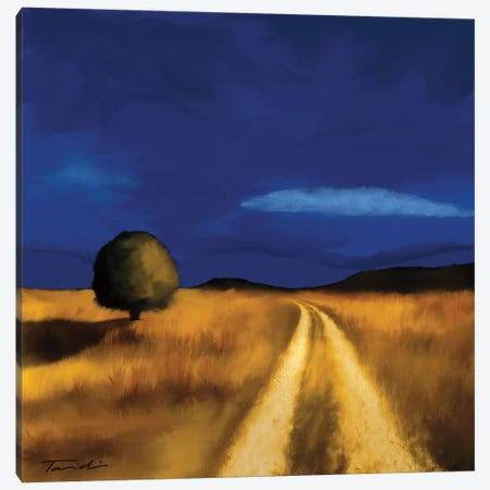 The Way Home Canvas Print #TAN198} by Tandi Venter Art Print
