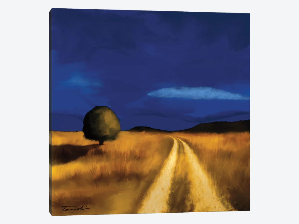 The Way Home by Tandi Venter 1-piece Canvas Art
