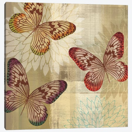Tropical Butterflies I Canvas Print #TAN206} by Tandi Venter Canvas Wall Art