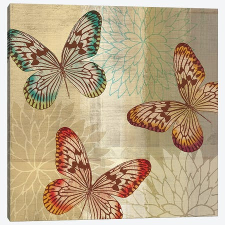 Tropical Butterflies II Canvas Print #TAN207} by Tandi Venter Canvas Wall Art