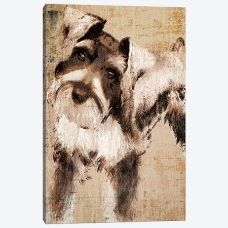 Tyson Canvas Print #TAN208} by Tandi Venter Canvas Art Print