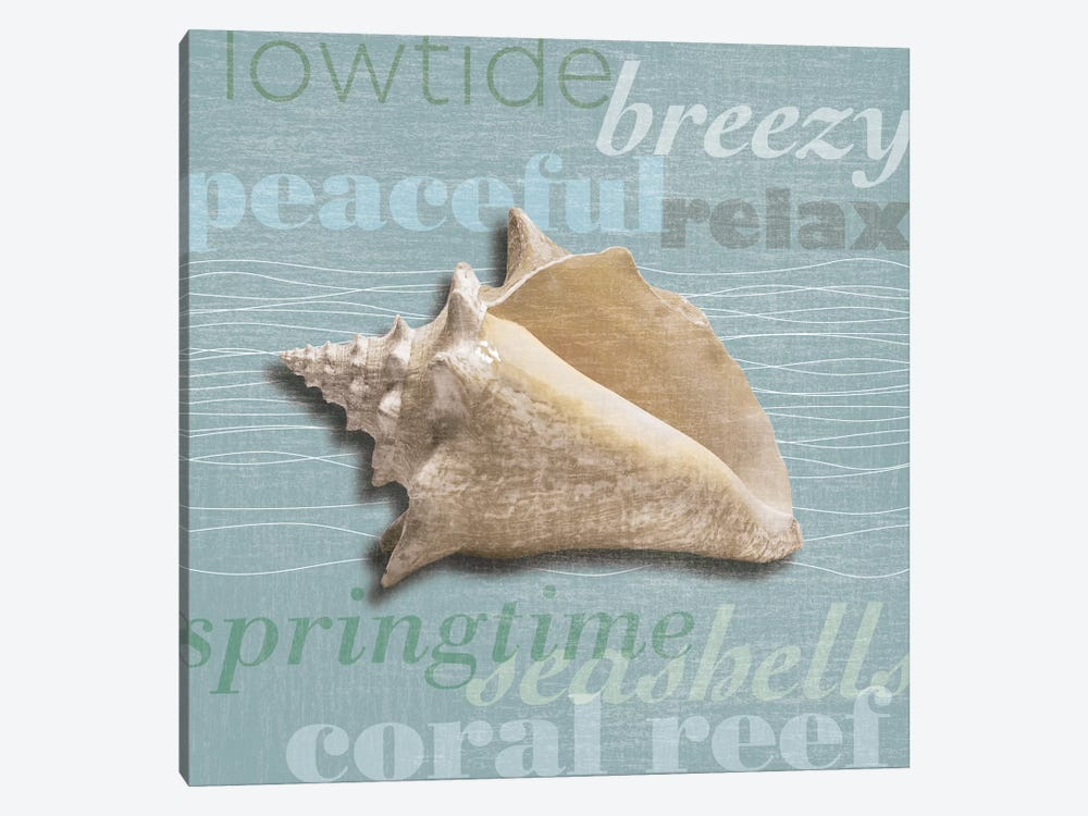 Beach Collection IV by Tandi Venter 1-piece Canvas Art Print