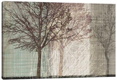Before Winter Canvas Art Print