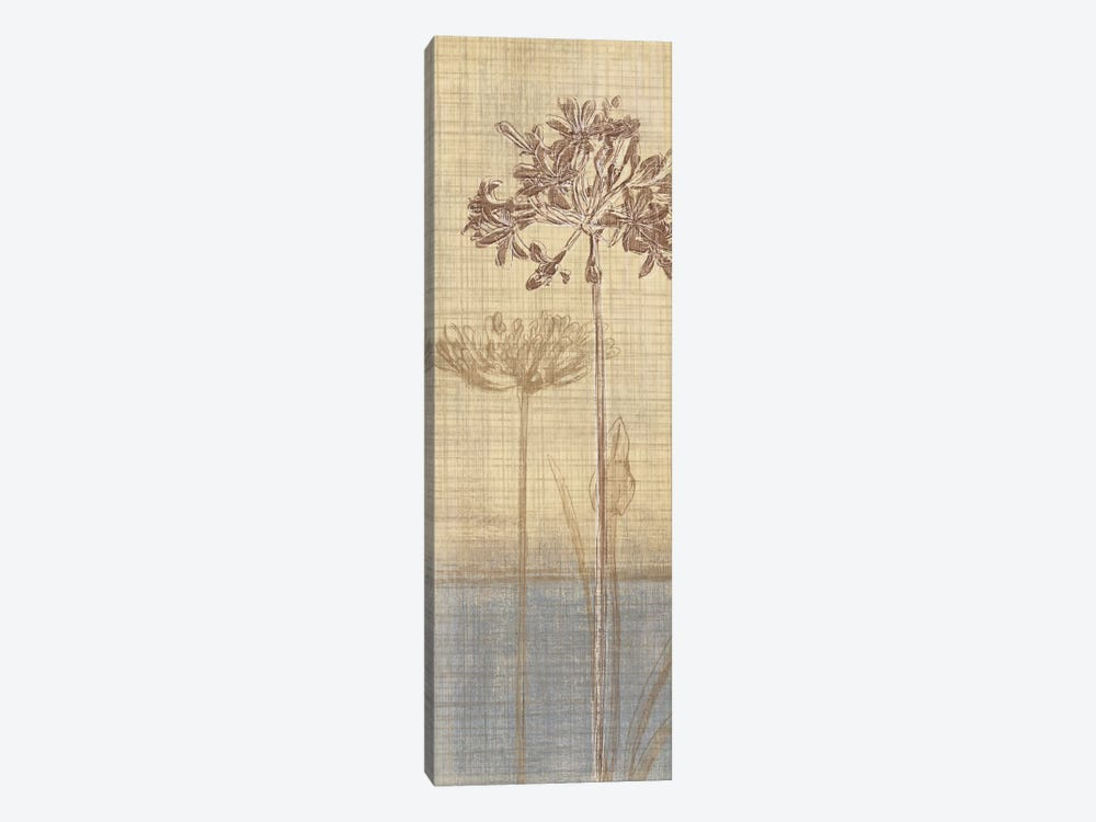 Botanical Sketchbook II by Tandi Venter 1-piece Canvas Art