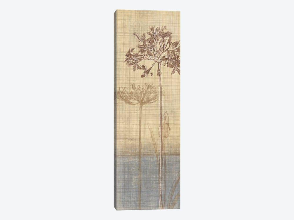 Botanical Sketchbook II by Tandi Venter 1-piece Canvas Art