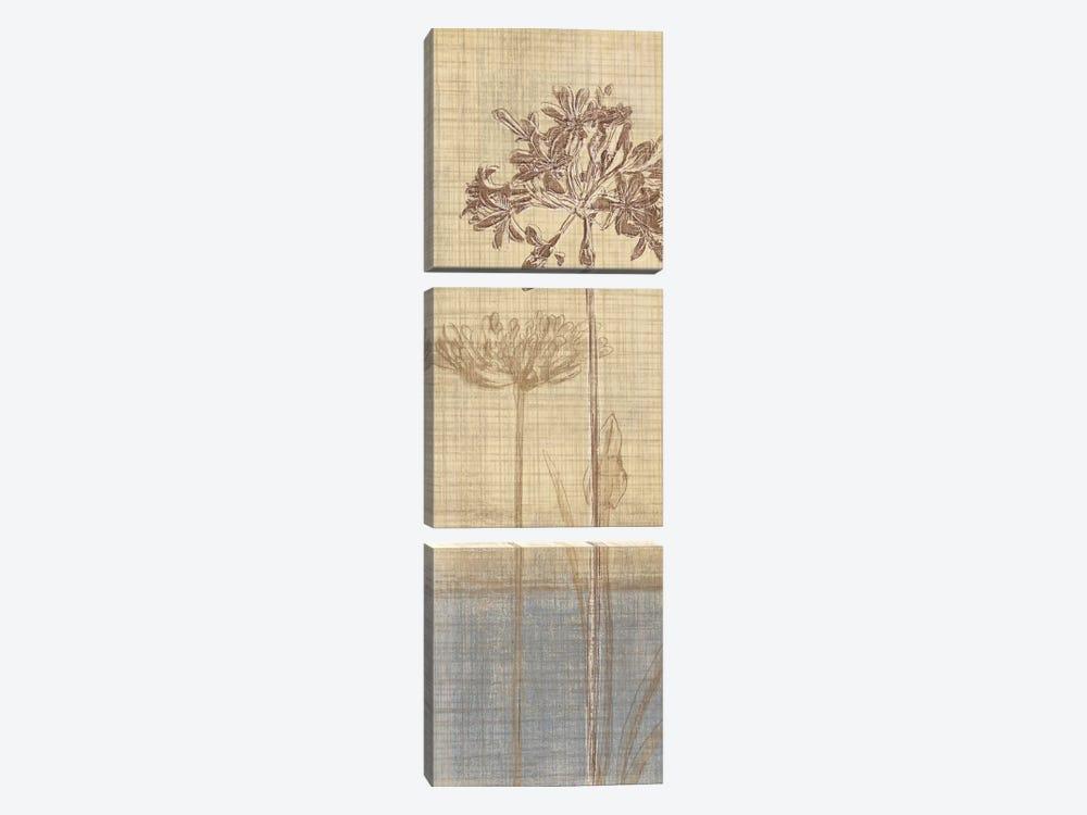 Botanical Sketchbook II by Tandi Venter 3-piece Canvas Art