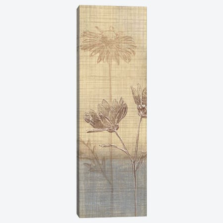 Botanical Sketchbook III Canvas Print #TAN35} by Tandi Venter Canvas Artwork