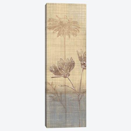 Botanical Sketchbook III Canvas Print #TAN35} by Tandi Venter Canvas Artwork