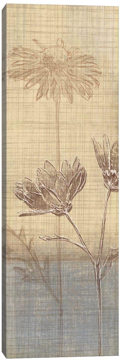 Botanical Sketchbook III Canvas Art Print
