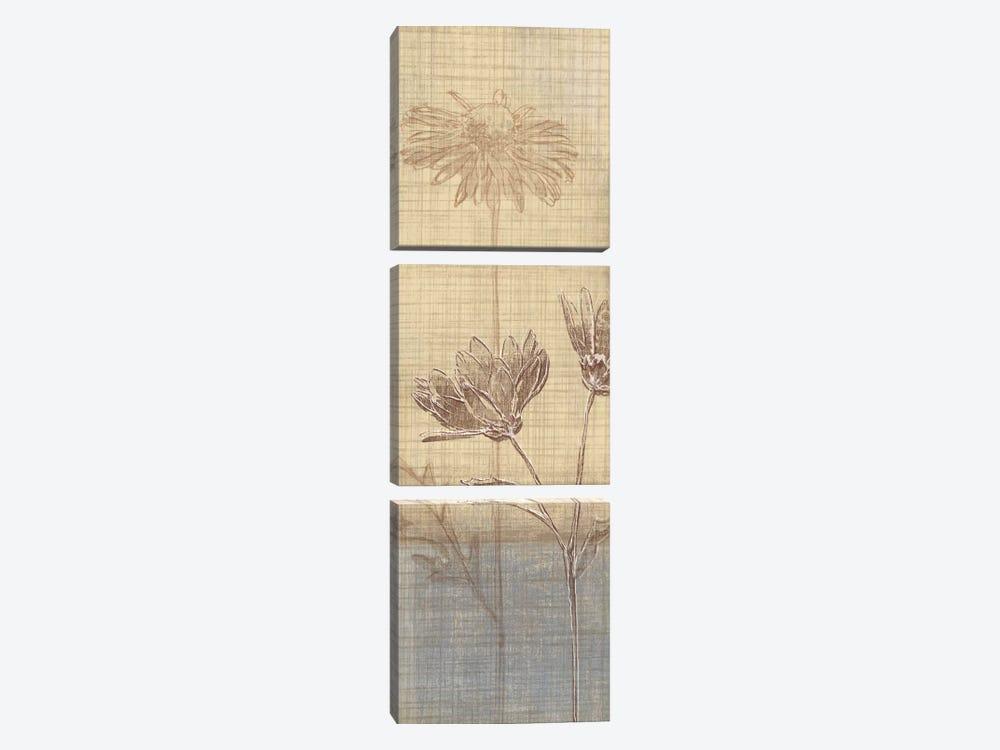 Botanical Sketchbook III by Tandi Venter 3-piece Art Print