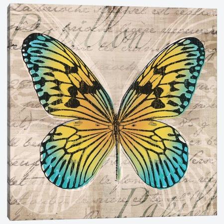 Butterflies I Canvas Print #TAN40} by Tandi Venter Canvas Artwork
