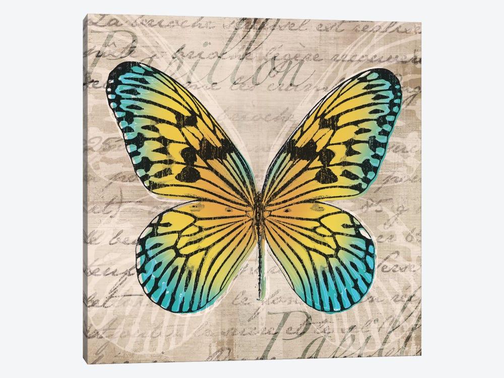 Butterflies I by Tandi Venter 1-piece Canvas Art Print