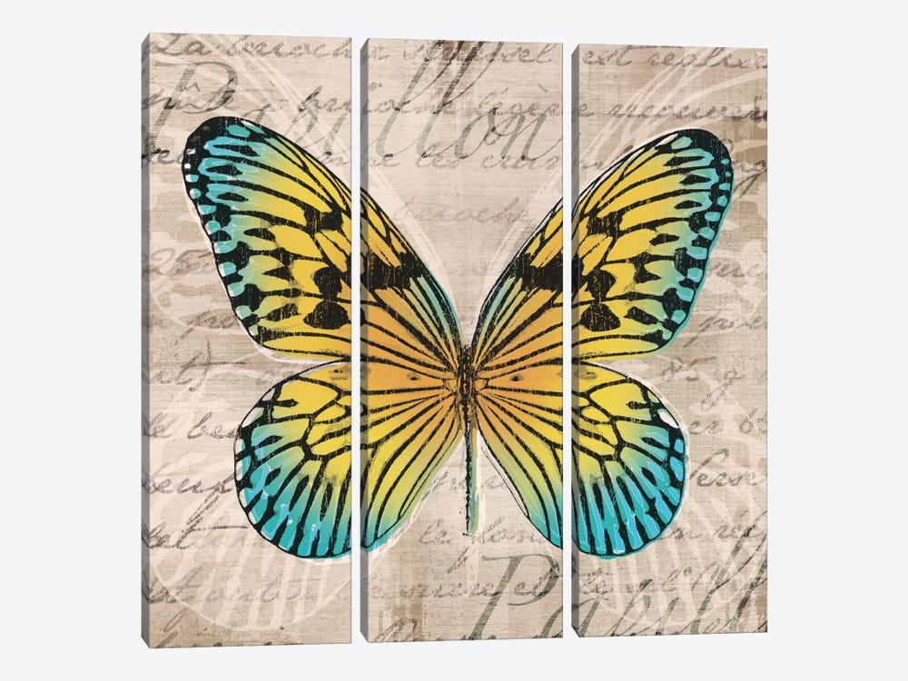 Butterflies I by Tandi Venter 3-piece Art Print