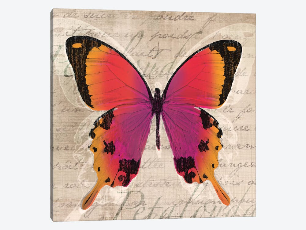 Butterflies III by Tandi Venter 1-piece Canvas Art Print
