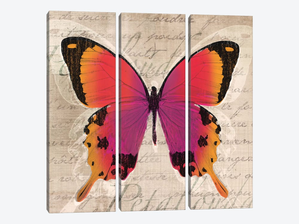 Butterflies III by Tandi Venter 3-piece Canvas Print