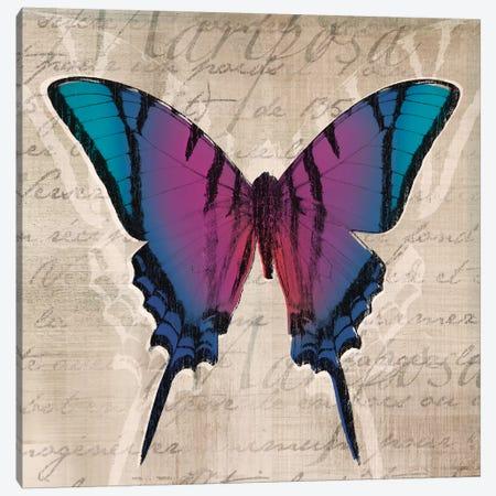 Butterflies IV Canvas Print #TAN43} by Tandi Venter Canvas Artwork