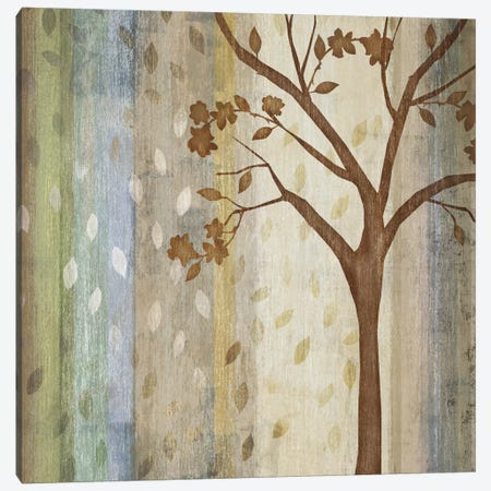 Changing Seasons I Canvas Print #TAN44} by Tandi Venter Art Print
