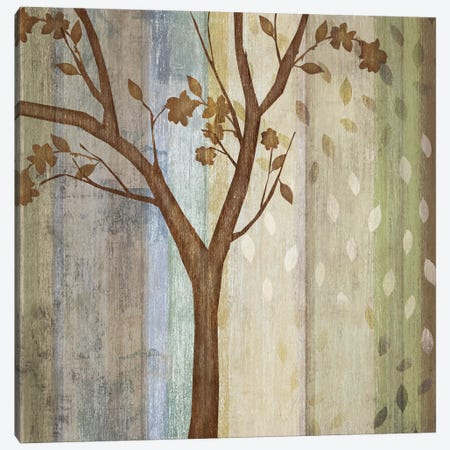 Changing Seasons II Canvas Print #TAN45} by Tandi Venter Art Print