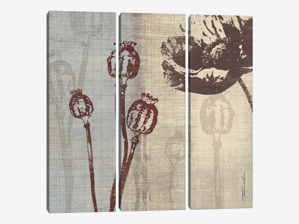 Chocolate Poppy by Tandi Venter 3-piece Canvas Art Print
