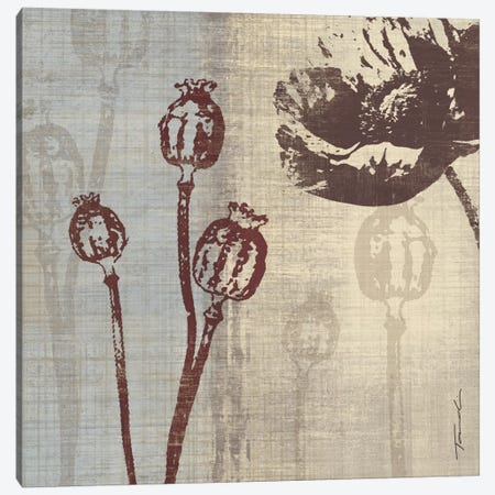 Chocolate Poppy Canvas Print #TAN48} by Tandi Venter Canvas Art