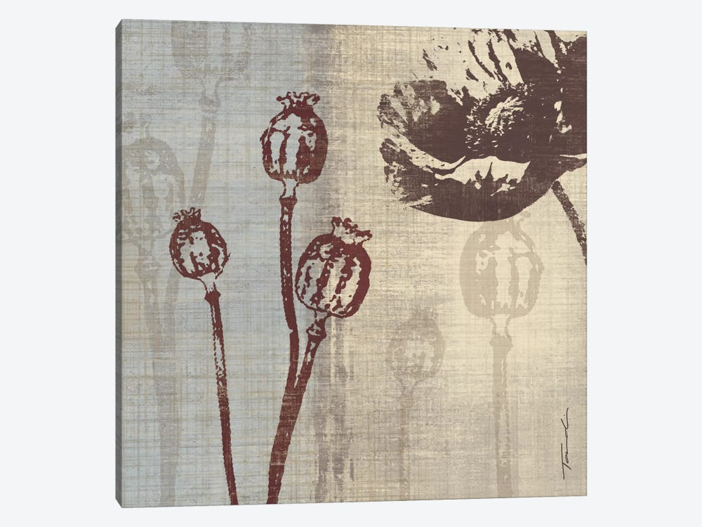 Chocolate Poppy by Tandi Venter 1-piece Canvas Art Print