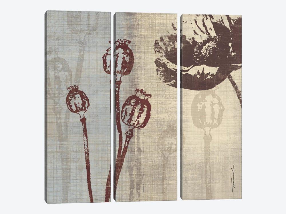 Chocolate Poppy by Tandi Venter 3-piece Canvas Art Print