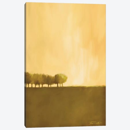 Cluster Of Trees I Canvas Print #TAN49} by Tandi Venter Canvas Wall Art