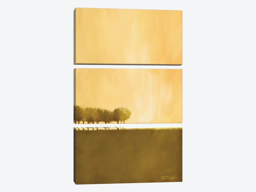Cluster Of Trees I by Tandi Venter 3-piece Canvas Artwork