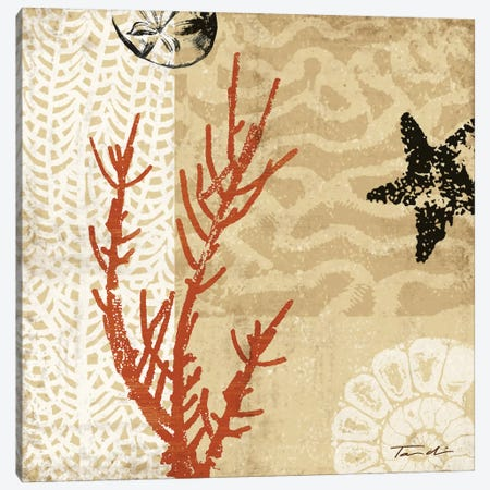 Coral Impressions I Canvas Print #TAN53} by Tandi Venter Art Print