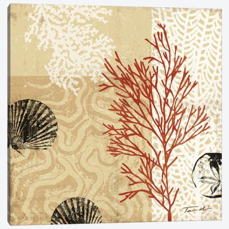 Coral Impressions II Canvas Print #TAN54} by Tandi Venter Canvas Art