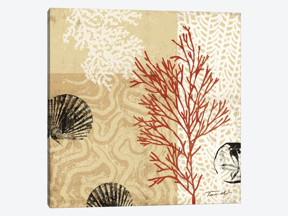 Coral Impressions II by Tandi Venter 1-piece Canvas Wall Art