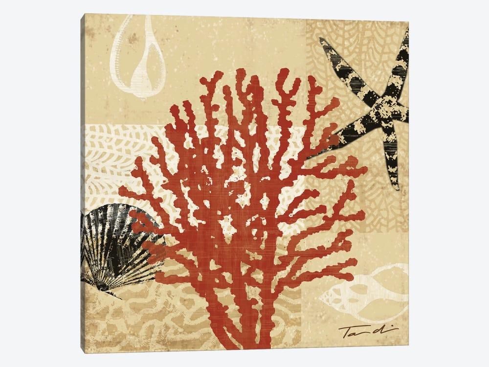 Coral Impressions III by Tandi Venter 1-piece Canvas Art Print