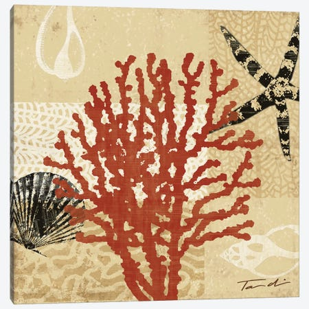 Coral Impressions III Canvas Print #TAN55} by Tandi Venter Canvas Artwork