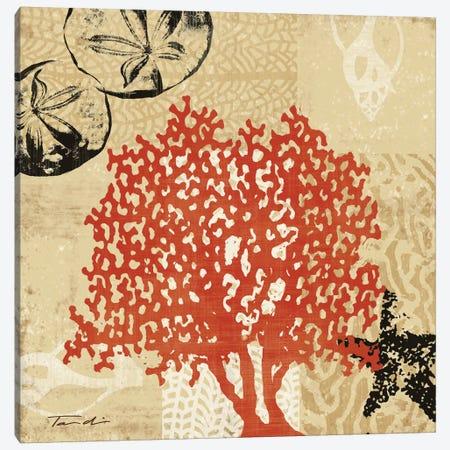 Coral Impressions IV Canvas Print #TAN56} by Tandi Venter Canvas Art