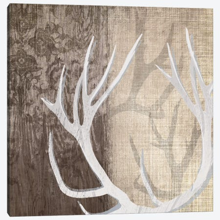 Deer Lodge I Canvas Print #TAN62} by Tandi Venter Canvas Art